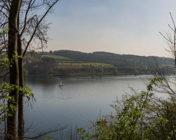 Thorsten-Lasrich-ghe-essen-gruene-hauptstadt-europa-2017-3