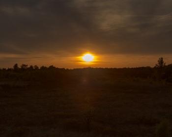 Sonnenuntergang im Korenburgerveen I