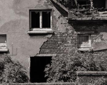 Blick über die Gartenmauer